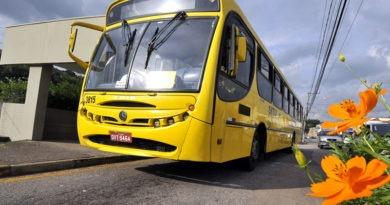 Linhas 542 e 579 terão alterações no Jardim Novo Horizonte