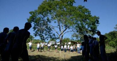 AutoBAn faz plantio de 1.500 árvores em Jundiaí