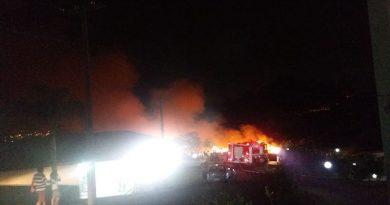 Incêndio ao lado de haras assusta vizinhos