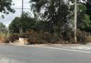 CPFL deixa galhos bloqueando calçada