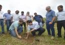 Bacia do rio Jundiaí Mirim recebe 14 mil mudas pelo Programa Nascentes