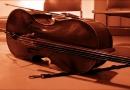 Músico busca criar conjunto de violoncelos em Jundiaí