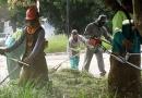 Prefeitura monta força-tarefa para corte de mato