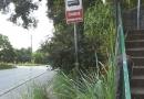 Leitor pede corte de mato em ponto de ônibus