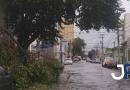 Ventos derrubam galhos de árvores na Marechal