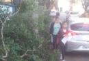 Galhos atrapalham circulação de pedestres