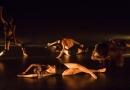 Dança e teatro são atrações neste final de semana