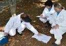 Zoonoses faz vistorias em Parques e Jardins