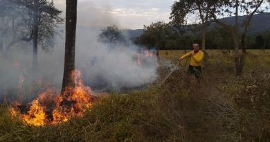 Divisão Florestal alerta para o risco de queimadas no período de estiagem