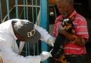 Itupeva: vacinação antirrábica estará no bairro da Mina nesta sexta (17)