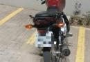 Canil da GMJ encontra moto furtada