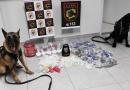 Canil da Guarda faz grande apreensão de drogas