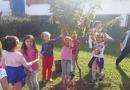 Campo Limpo: Equipe do Viveiro faz plantio na EMEF Charrua