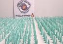 PM apreende mais de mil embalagens de cocaína