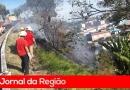 Vândalos colocam fogo em terreno