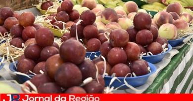 Inscrições abertas para curso de processamento de frutas