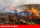 Encontro de Agricultores vai debater incêndios